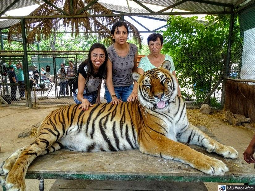 Zoo Luján - Roteiro - 5 dias em Buenos Aires, Argentina