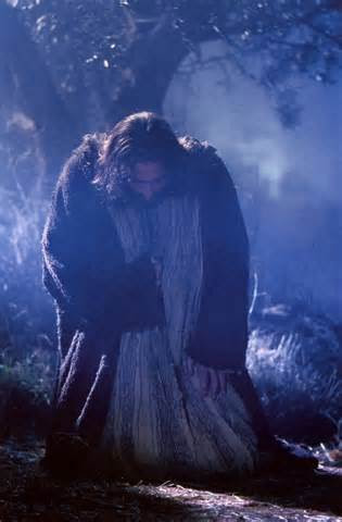 Veritas lux mea reflections on the rosary part iii the - Jesus in the garden of gethsemane ...