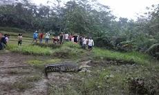 Penampakan Buaya Di Sungai Lukulo Kebumen