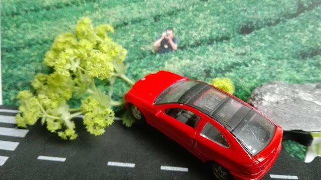 Rood speelgoedautootje dat van de weg afrijdt, zogenaamd de berm in maar dat is een plaatje uit een tijdschrift met een takje vrouwenmantel.