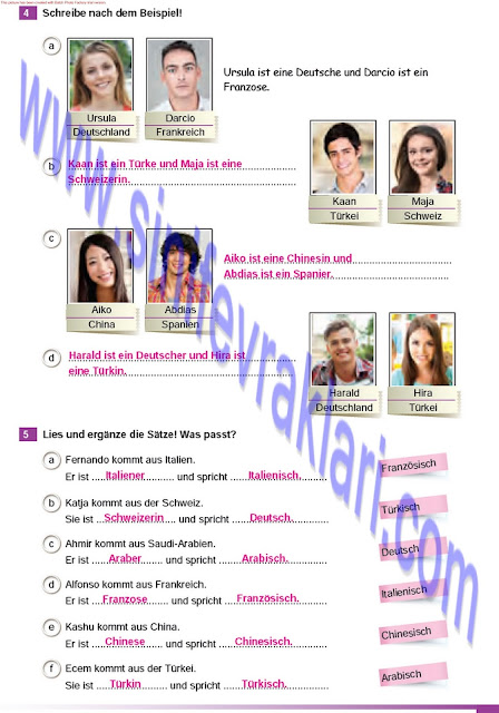 Almanca A1.2 Çıpa Yayınları Çalışma Kitabı Cevapları Sayfa 11
