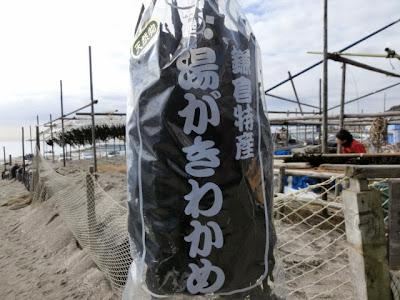 鎌倉:湯がきわかめ