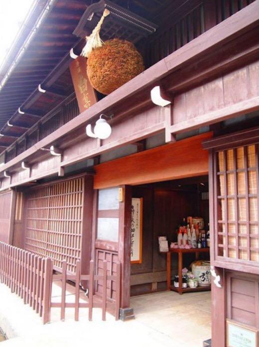 Ikan Koi Membiak Dalam Longkang Di Jepun