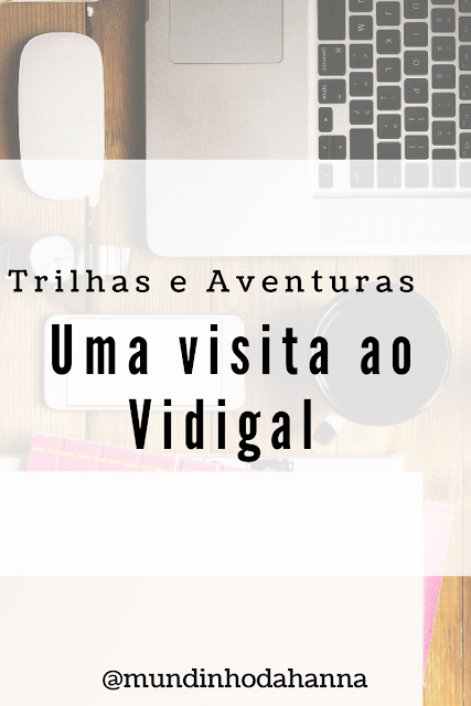 Uma visita ao Vidigal