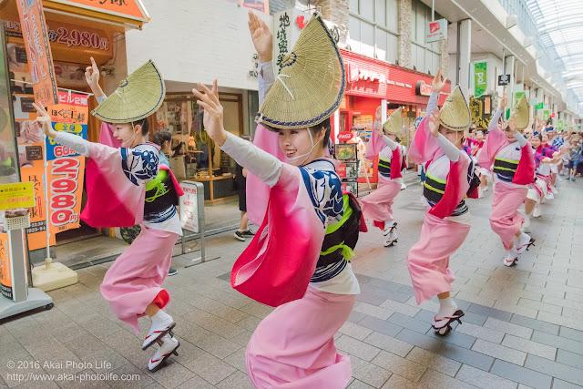 天翔連、高円寺パル商店街での流し踊り、女踊りの写真 4