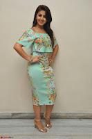 Nikki Galrani in Cute Dress Dress At Marakathamani Success Meet ~  Exclusive 016.JPG