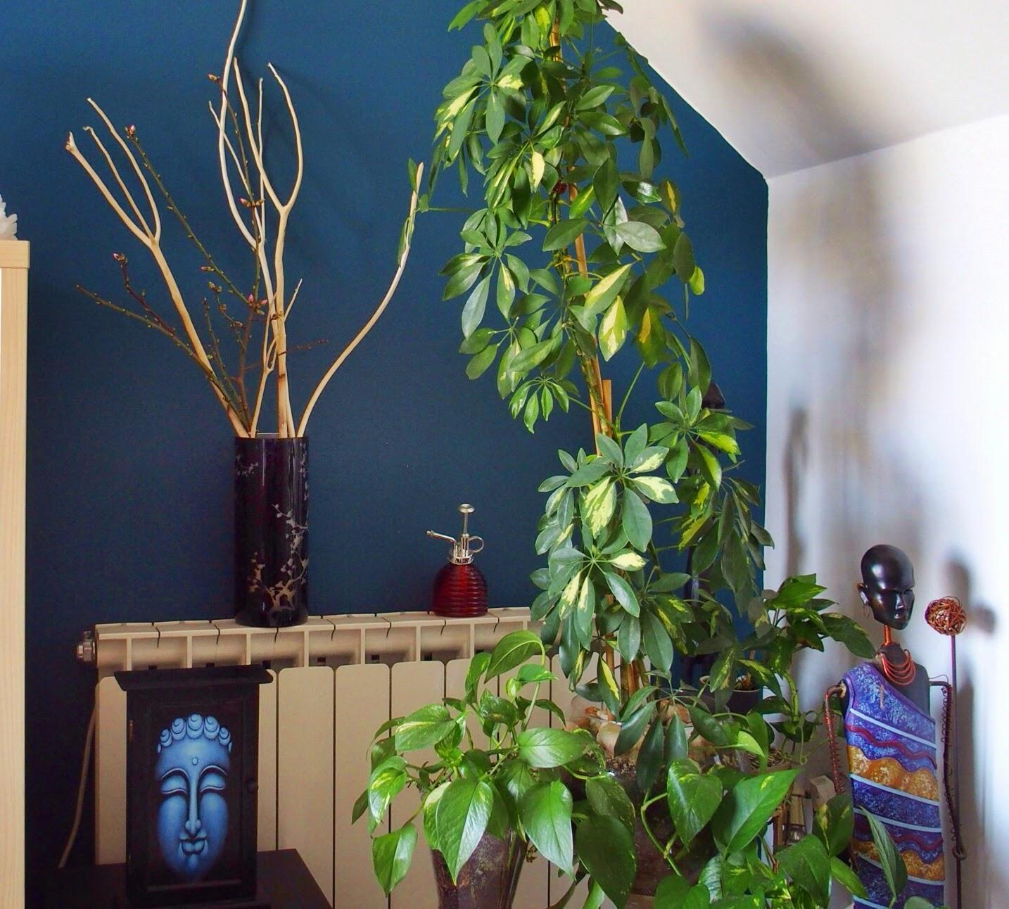 Equilibrio Feng Shui: La Casa del año: Feng Shui en mi salón
