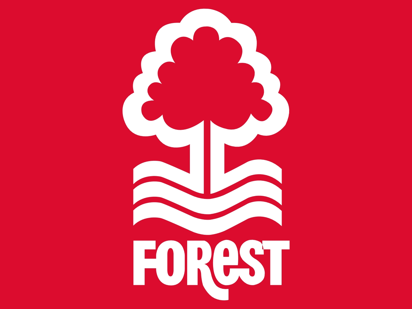 nottingham forest - photo #22