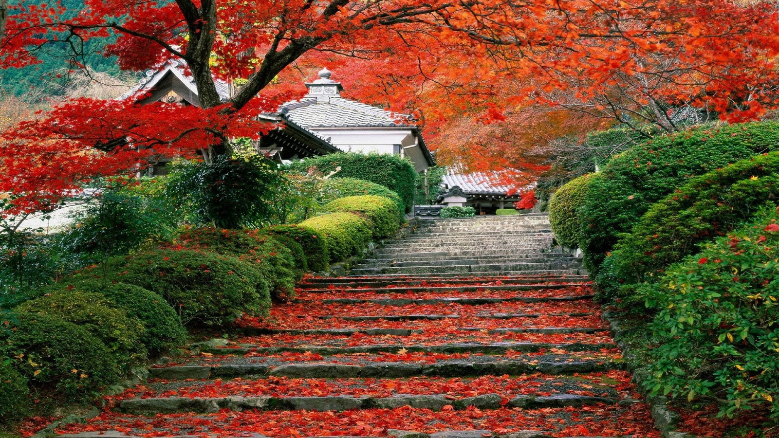 Japanese Garden Wallpapers: Japanese Garden HD Wallpaper