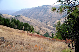 Joseph Canyon Viewpoint overlooks Joseph Creek