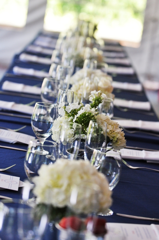 Sonal J. Shah Event Consultants, LLC: Red, White and Blue ...