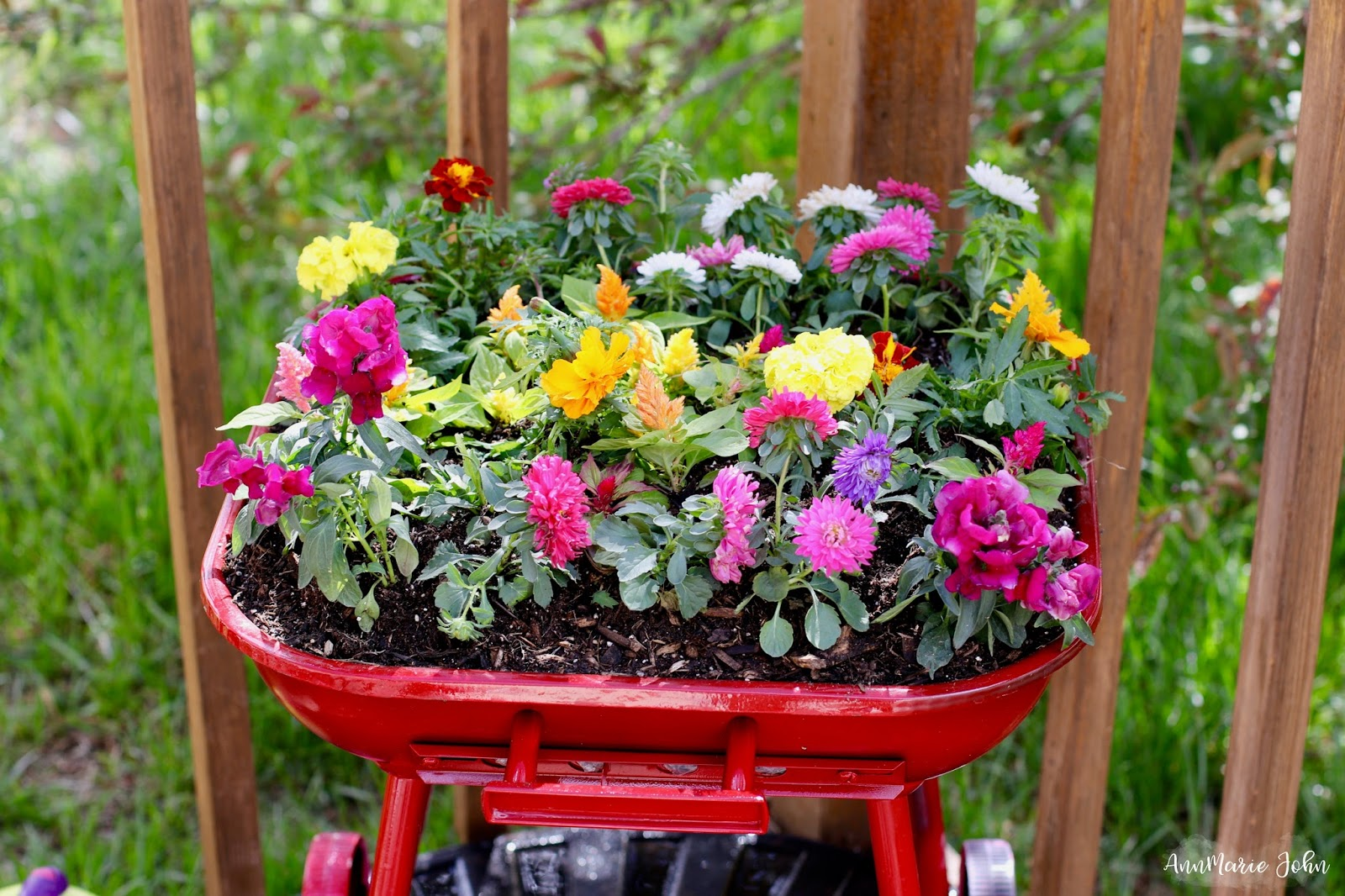grill flowerbed