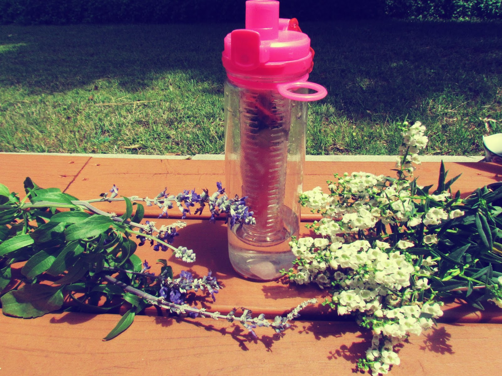 Fruit Infuser Water Bottle for Hiking Adventures + natural herbs and flower botanicals like lavender and blue hydrangeas