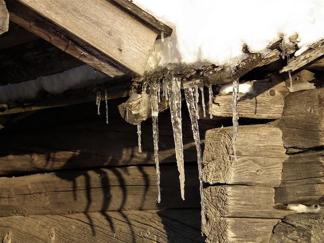 jääpuikko, talvi, kevät lato