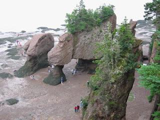 Hopewell Rocks Low Tide.