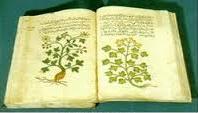 Malaqi atau yang lebih dikenal dengan nama Ibnu Al Ibnu Al-Baitar - Apoteker, Ahli botani, Dokter dan ilmuwan Muslim
