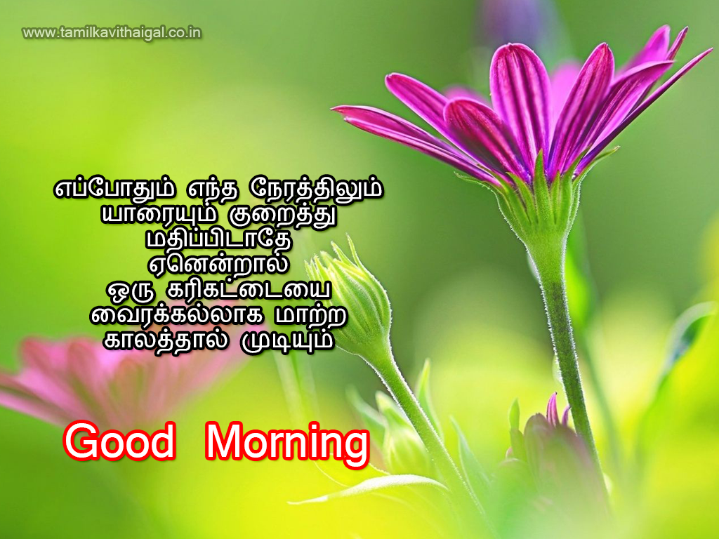 Good Morning Love Kavithai : Good morning kavithai tamil kavithaigal