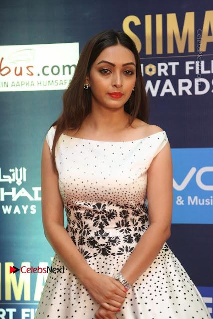 Actress Pooja Salvi Stills in White Dress at SIIMA Short Film Awards 2017  0026