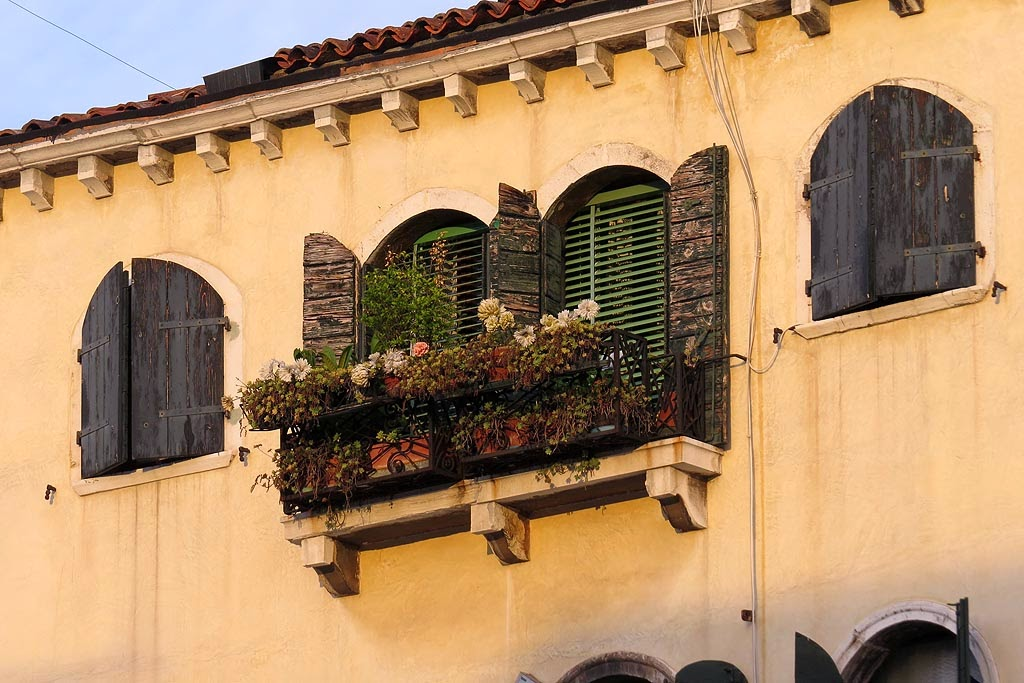 Windows with and without flowers, Campo Santo Stefano, Venice