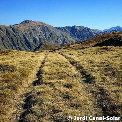 Camino en la hierba de Varradòs