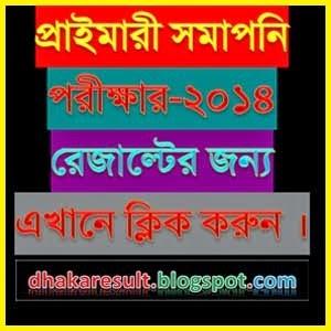 PSC Result 2014 dpe.gov.bd
