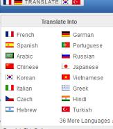 Cara Membuat Widget Translate Pada Blog