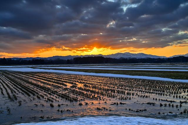 #photo #landscape #sigma #foveon #sdquattroh #japan #yamagata #tsuruoka #山形県 #鶴岡市 #山形帝國 #写真 #風景写真