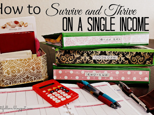 How to Thrive and Survive on a Single Income