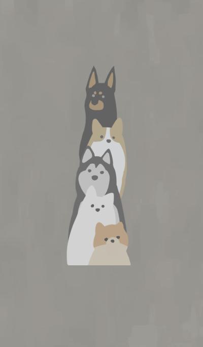 Order dog^