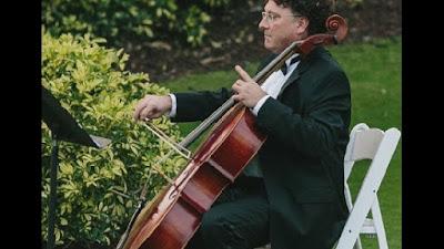 Musicista compra posto a sedere in aereo per suo violoncello, cacciato