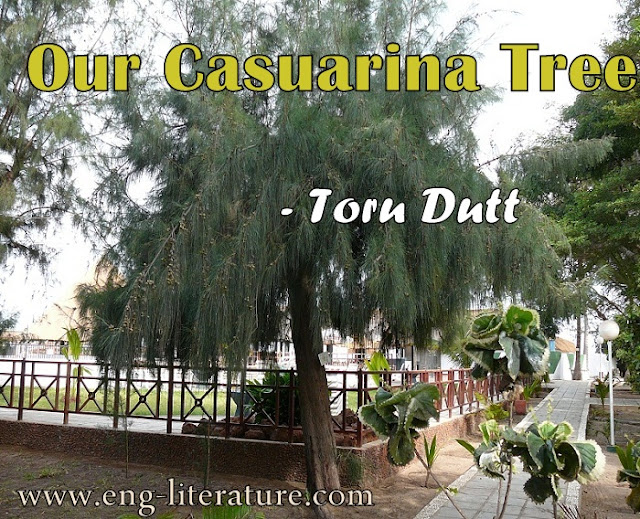 "Critical Analysis of Toru Dutt's poem, ""Our Casuarina Tree"" or Bring out the Autobiographical, Nostalgic and Spiritual Element in ""Our Casuarina Tree"""