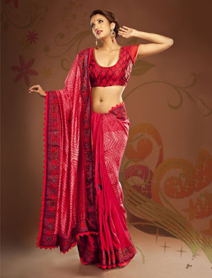 Stunning Photo Of Indian Model Girl In Beautiful Embroidered Border Pink Saree.