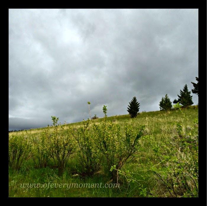 Montana, spring, stormy skies, clouds