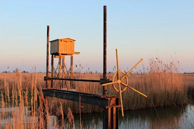 Laguna Encanyssada. Delta del Ebro
