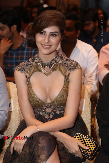 Actress Model Naaz Norouzi Pos in Leg Spit Dress at SIIMA Short Film Awards 2017  0073