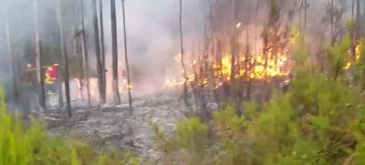 Incêndio em Maiorca provocado por trovão