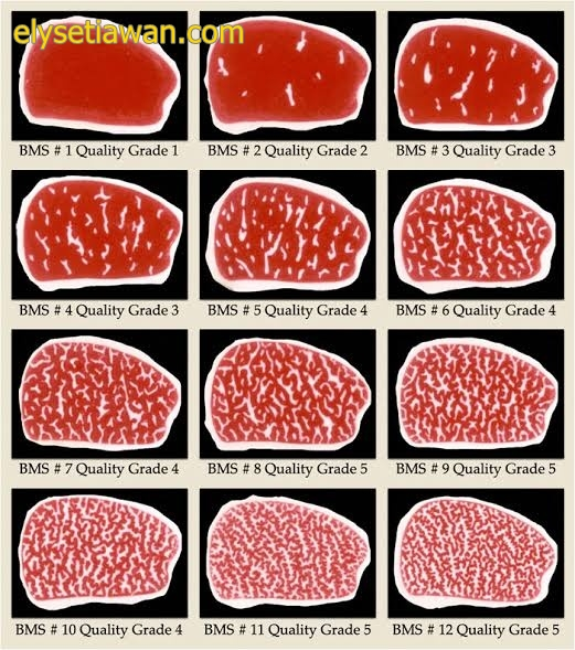 gambar marbling daging sapi