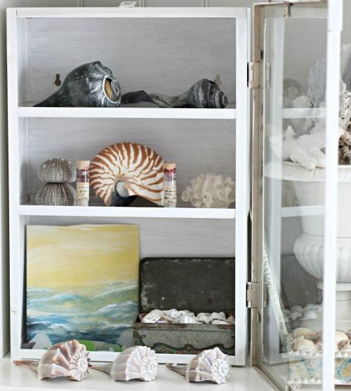 You Collect Seashells