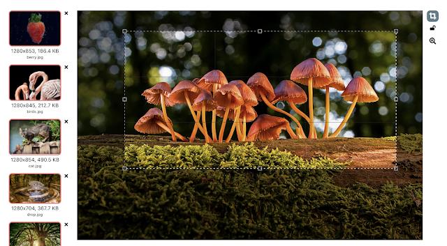 Picinez image cropping tool