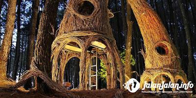 Hutan Pinus Pengger Jogja