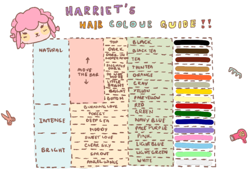 Merry Crossers: New Leaf Blog: Hair Guide