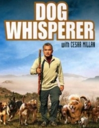 Dog Whisperer with Cesar Millan 7 | Bmovies
