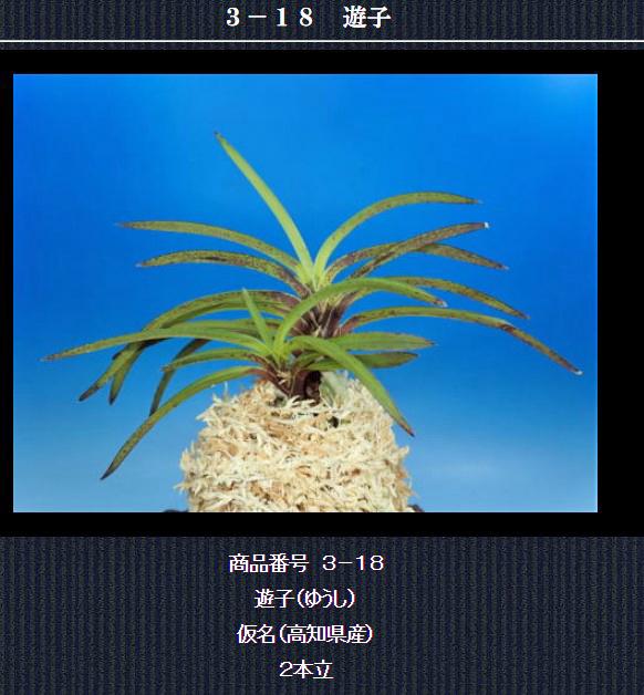 http://www.fuuran.jp/3-18html