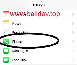 Pengaturan panggilan iPhone