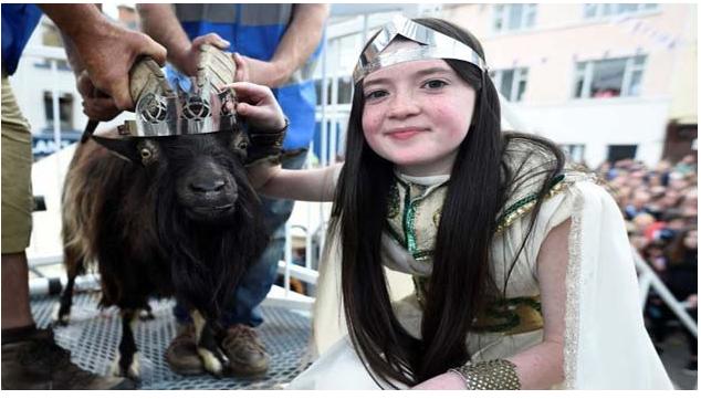 इस सहर में बकरे को बनया जाता है राजा और 12 साल की लड़की बनती है रानी