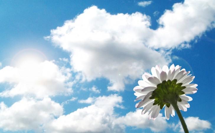 Muitas vezes Revista Ecotour News: Nuvens: sua formação e classificação UG63