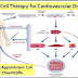 Plan Your Stem Cell Therapy for Cardiovascular Disorder in India