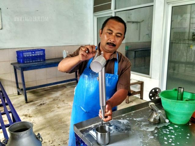 Koperasi Susu Sapi Pujon Kidul Malang