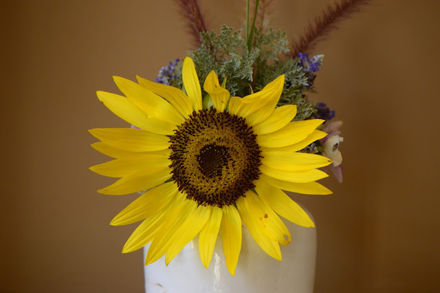 sunflower, small sunny garden, desert garden, amy myers, monday vase meme