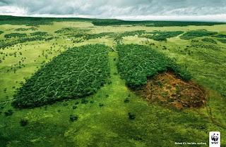 8 de agosto 2016: La humanidad ha gastado todos los recursos naturales que la Tierra puede reponer en un año